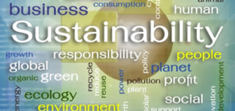 Here's Why Sustainability is All The Rage Among Businesses