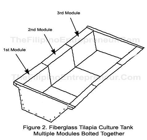 Multiple Tilapia Tank Module